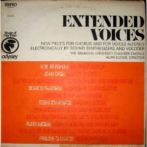 The album cover of the LP Extended Voices